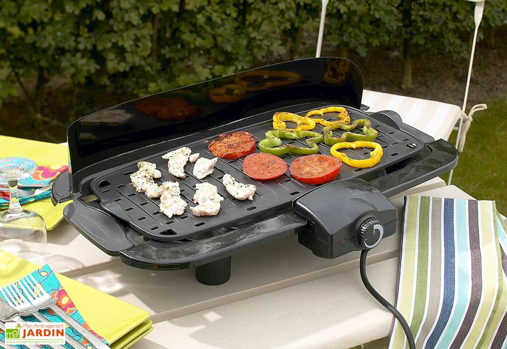 Plancha barbecue electrique barbecue electrique 2 en 1 for Plancha electrique interieur