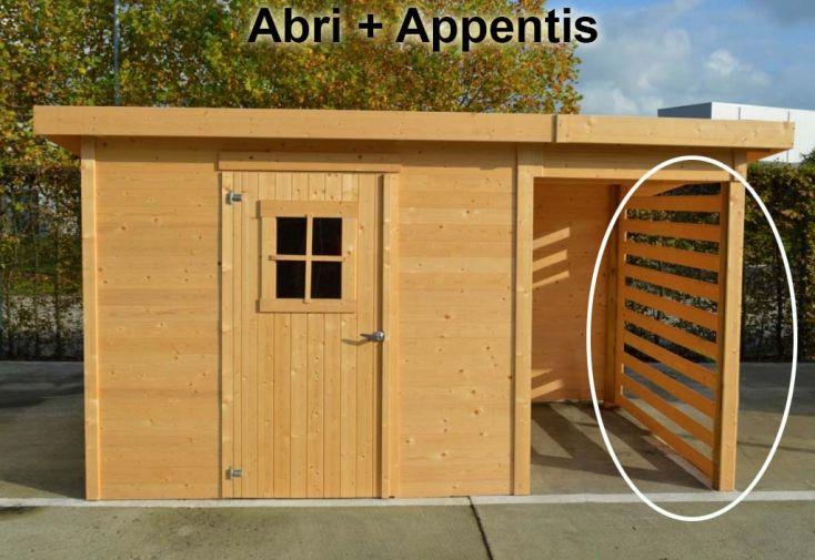 Abri de Jardin Bois 19 mm (240x240) + Appentis avec Panneau Latéral Offert