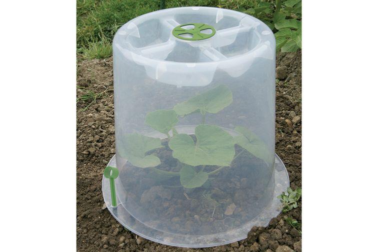 Cloche potagère Modulo 35 pour protection des plants unitaires