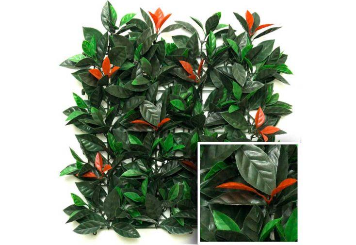Haie Décorative Eucalyptus (1x1m)