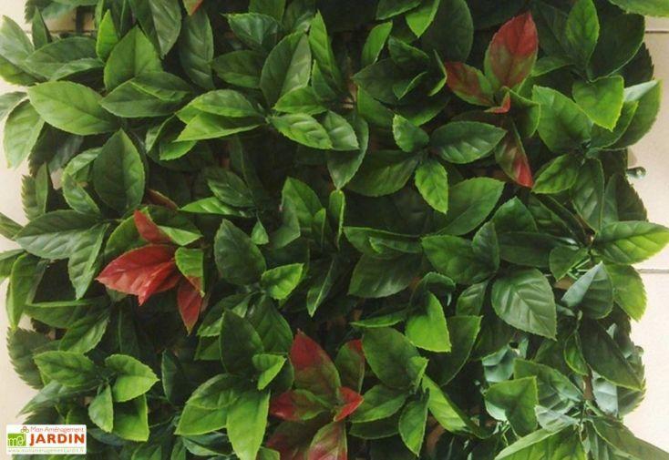 Echantillon Haie de Lierre Rouge Artificielle 25x25cm