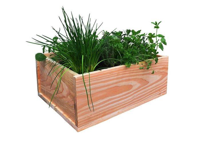 Jardiniere En Bois Douglas Rectangulaire 60 X 40 Cm Garden City