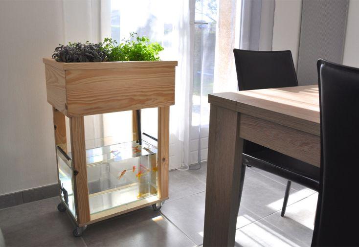 Kit complet d'aquaponie en bois brut et aquarium en verre