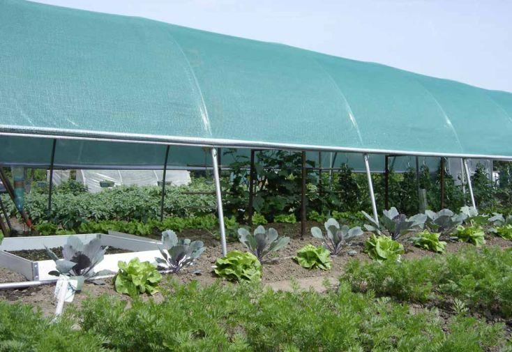 Ombrage pour Serre Jardiniere 6 m