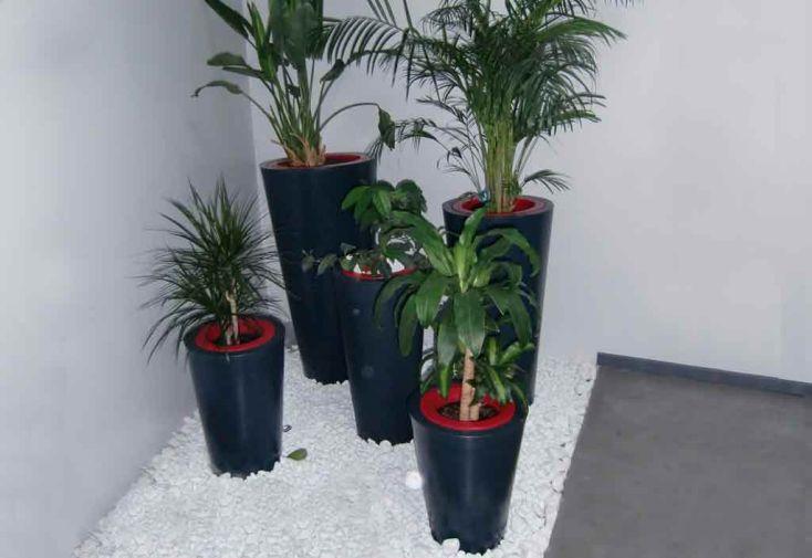 Jardinière PVC Colors Up XXS avec Anneau (Ø40/30x60)