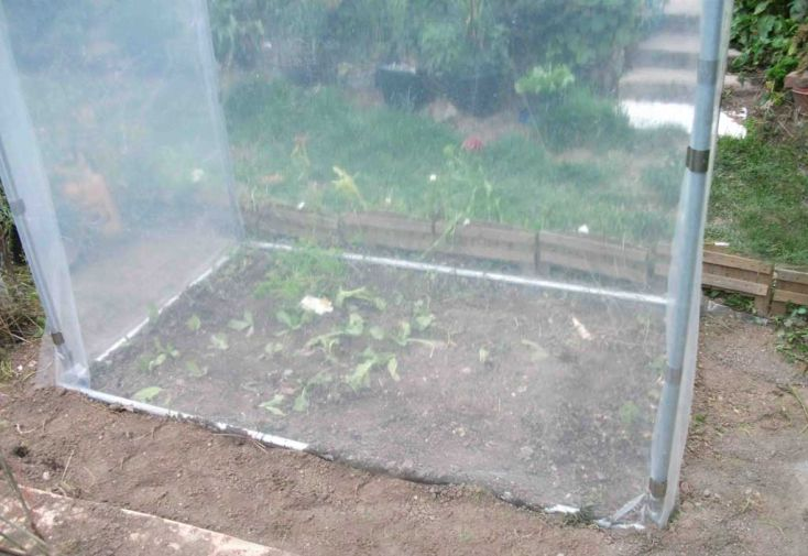 Mini Serre de Jardin Potager PE 200
