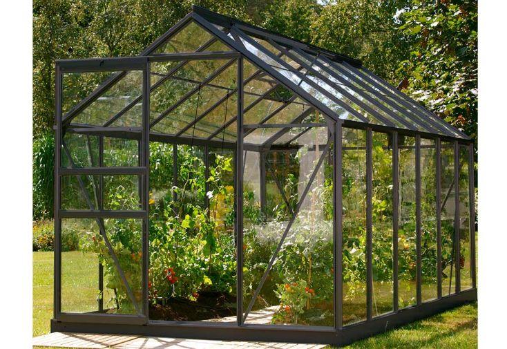Serre de jardin en verre trempé Lams Allium Venus 7500 alu anthracite