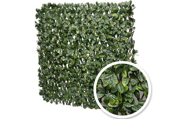 Treillis extensible 2 x 1 m avec feuillage synthétique imitation laurier France Green