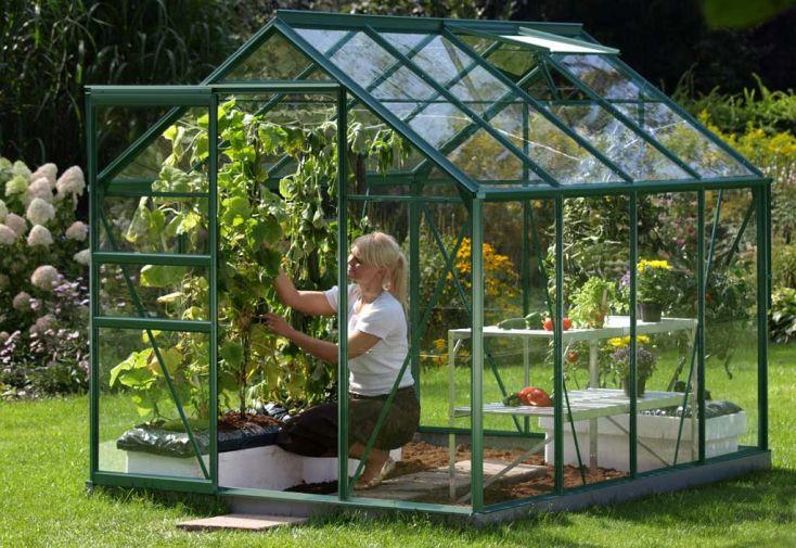 Serre de Jardin en Verre Trempé Venus 5000 Laqué Vert
