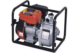 Pompe Surface Thermique Eaux Claires 2,6 HP 25000 l/h