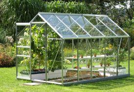 Serre de Jardin en Verre Trempé VENUS 6200 Laqué Vert