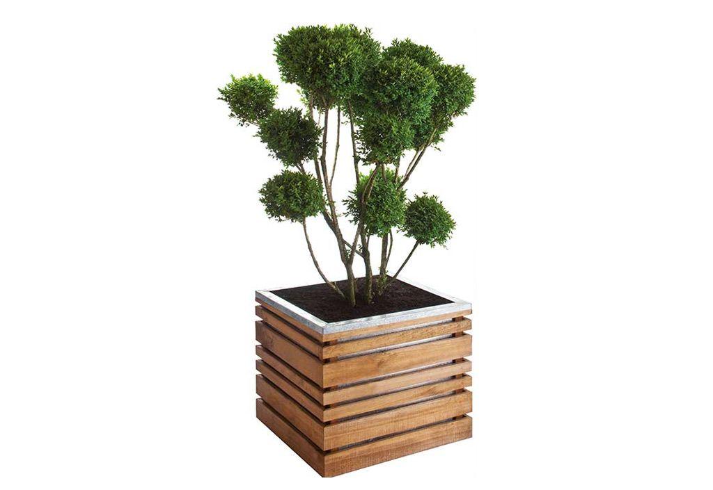 Cat gorie jardini re page 10 du guide et comparateur d 39 achat - Pot fleur bois ...